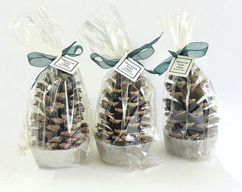 25 Pine Cone Fire Starter Wedding Favors, Wedding Table Decor- Pine Cone Fire Starter Party Favors, Gift Wrapped in Clear Favor Bags