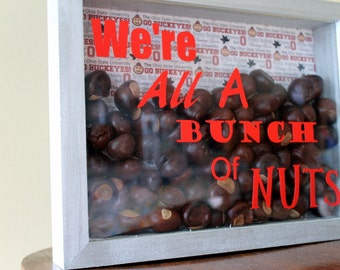 Ohio State Decor We're All A Bunch Of Nuts Shadow Box