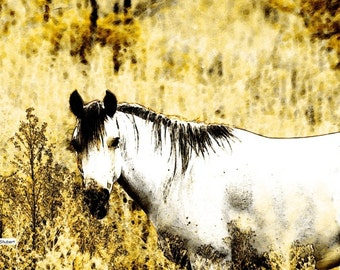 White Horse Art, Abstract Realism, Texas Pasture, Digital Design, Southwestern Totem Animal, Sepia Home Decor, Wall Hanging, Giclee Print