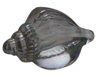 Iridescent Seashell Paperweight