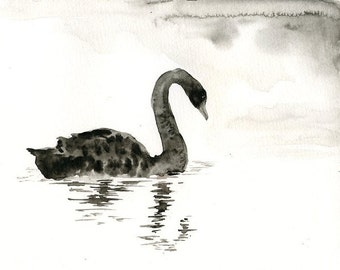 BLACK SWAN Original watercolor painting 10x8inch