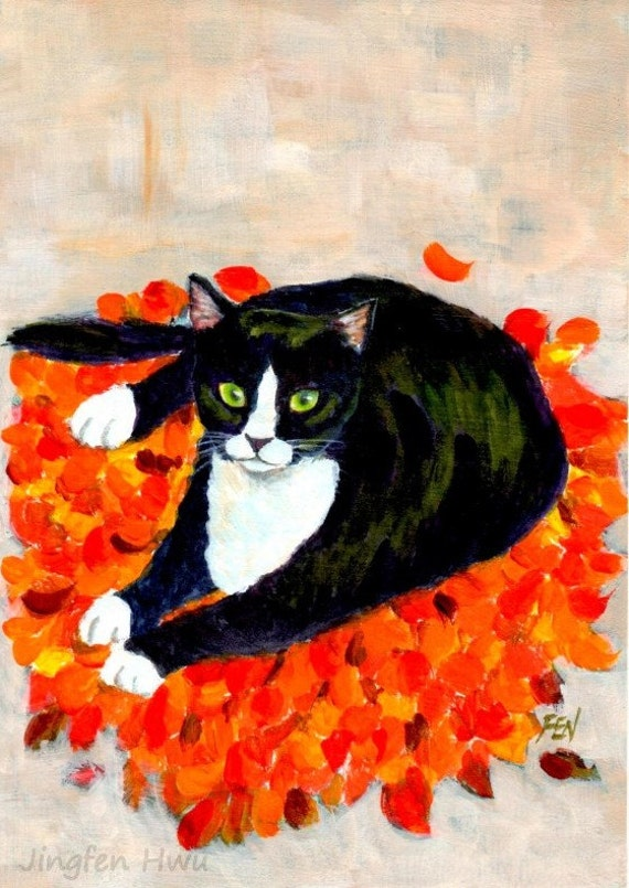 tuxie cat in leaves