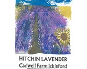 Hitchin Lavender Lino and Letterpress Print- Poster