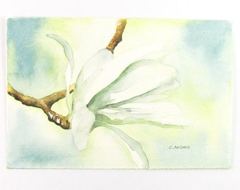 White Star Magnolia Original Watercolor Painting 4 x 6