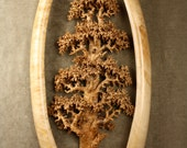 Expensive best of etsy carved wood Oak Tree wood carving wall art