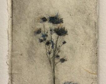 Flower in Blue- original etching