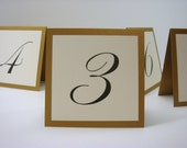 Wedding Table Number Small Tented Design Prepared in Colors to Coordinate with your Wedding Reception Decor  3.5 x 3.5 Size