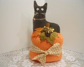CAT, Pumpkin, FFFOFG, Fall, Halloween,
