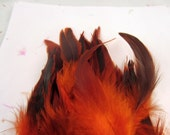30 Orange feathers loose Schlappen half bronze Dyed 3 to 6 inches  K81