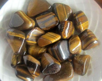 Tiger's Eye tumbled polished gemstones set of 2 - witchcraft supplies wicca wiccan crystals pagan gemstones magick metaphysics
