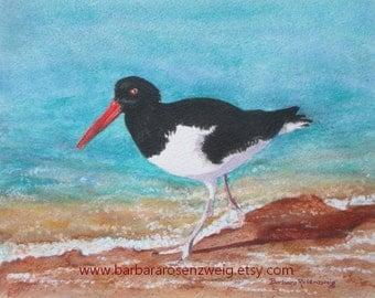 Beach BIRD PRINT, Coastal Print, Beach Painting, Bird Painting, Oystercatcher Watercolor, Bird Wall Art, Beach Wall Art, Oystercatcher Art