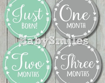 FREE GIFT Monthly Baby Stickers Baby Month Stickers Baby Photo Stickers Monthly Milestone Stickers Mint Grey Tribal Arrows Month Stickers