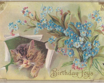 Birthday Joys- 1900s Antique Postcard- Tabby Cat- Forget-Me-Nots- Edwardian Decor- Art Card- Paper Ephemera- Used