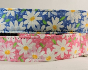 Dog Collar, Martingale Collar, Cat Collar - All Sizes- Packed Daisies
