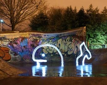 There's A Whale - Light Graffiti Canvas Print - Ltd Edition of 25 -  Long Exposure Light Art Photography. Moody Vibrant Lighting Sea Fish