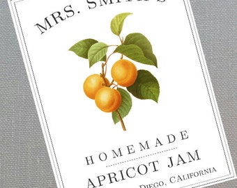 Apricot, Apricot Jam,Apricot Presevers Canning Label or Sticker, set of 18