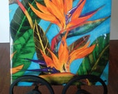 """Ceramic Tile 8""""x8"""".  """"Bird of Paradise"""" artwork by Candace Lee. Made in Hawaii with Aloha!"""