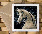 KNIGHT, Arabian horse action portrait, Art Card, Horse Greeting card, Equine photography.