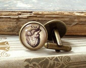 Anatomical Heart Cufflinks - Antique Anatomy Print Cuff Links in Bronze - Wedding