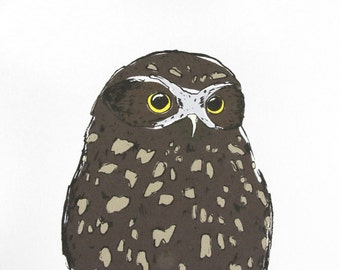 Ruru New Zealand Owl Limited Edition Archival Art Print