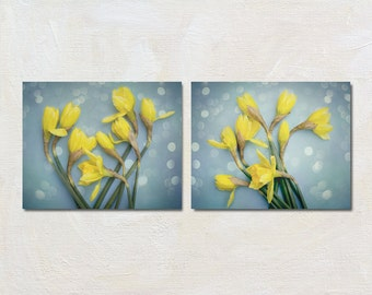 Daffodil Print Set of Two Photographs, Yellow and Blue Decor, Spring Flower Wall Art, 2 Picture Set, Floral Artwork Set, Still Life Art Set