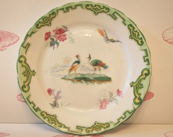Vintage Cake Plate With Exotic Birds, 1940s