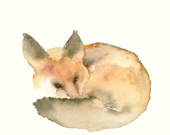 Sleeping Fox Fine Art Print from Original Watercolor Painting