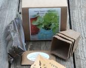 Cilantro Seeds Herb Seed Kit Organic Indoor Herb Garden Kit with Growing Supplies