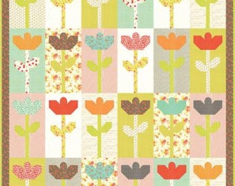Daisies Quilt Kit  FT 1020 Fig Tree Quilts
