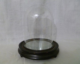 Antique Display Dome, 19th Century Glass Dome With Mirrored Wooden Base