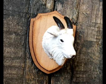 Mountain Goat Taxidermy Magnet