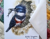 "Belted Kingfisher Female- 4""x6"" Greeting Card Print of Pen and Ink Watercolor Bird Painting"