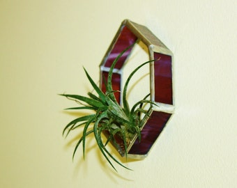 Hexagon Air Plant Base Camp, Unique Stained Glass, Modern Style Plant Holder, Wall Pocket