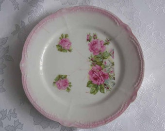 Hand Painted Pink Rose Plate Bavarian Rose