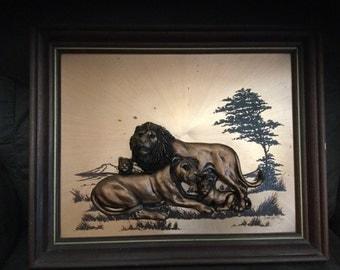 John Louw copper lions