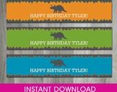 Dinosaur Birthday Party, Self Editable, INSTANT DOWNLOAD, Water Bottle Labels, Wrapper, Party Printable, Diy, Digital Pdf File, Boy Birthday