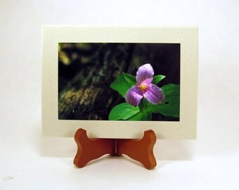 Purple Trillium, Blank Photo Note Card, Photo Note Card, FI0104