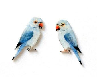 Hand drawn Ringnecked parrot earrings. Bird Earrings. Parrot ear studs