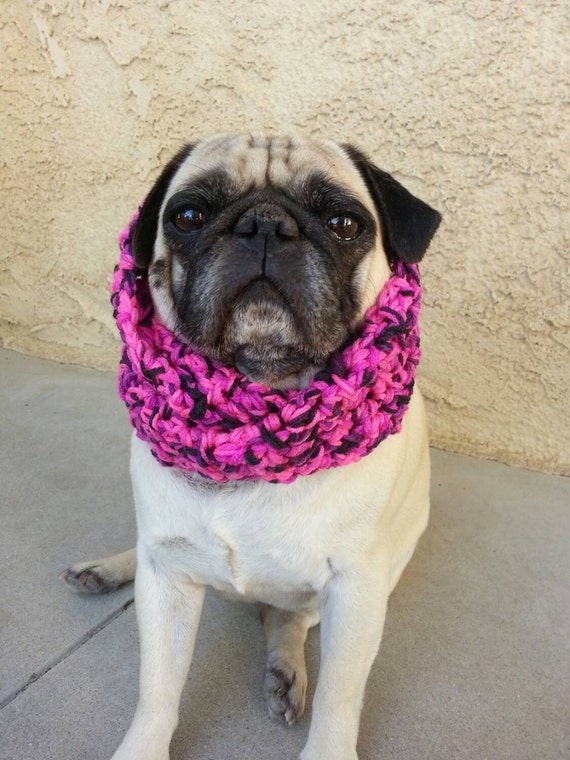 chunky infinity scarf pugs scarves for dogs winter