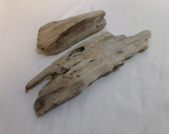Flat Driftwood Assortment - 2 Nice Driftwood Pieces !
