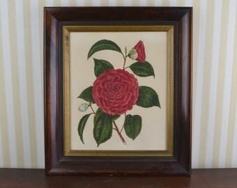 Vintage Framed Watercolor