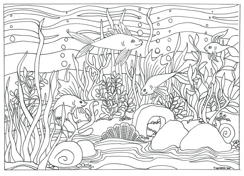 aquarium plants coloring pages - photo#9