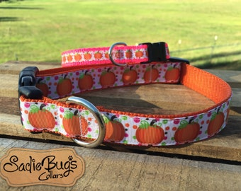 Pumpkin dog collar - Halloween