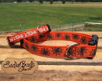 Spider web orange dog collar - Halloween