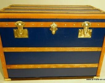 Blue convenient trunk