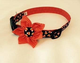 "Dog Flower Collar ""A Little Corny"""