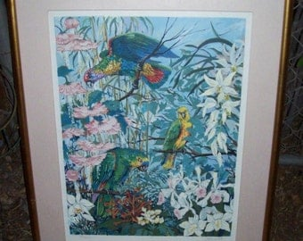 """Framed Limited Edition Signed Serigraph Print by JOHN POWELL titled """"Parrots and Hibiscus 1985'"""