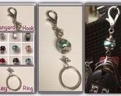 Interchangeable Key Ring