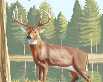 White Tailed Deer (Art Prints available in multiple sizes)