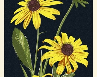 Maryland - Black Eyed Susan - Letterpress (Art Prints available in multiple sizes)
